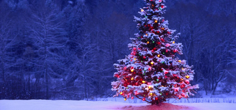 Iluminación LED navideña
