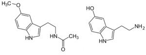 Moléculas de melatonina y serotonina